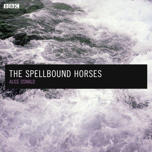 Spellbound Horses - Audiobook (Książka audio MP3) do pobrania w całości w archiwum ZIP