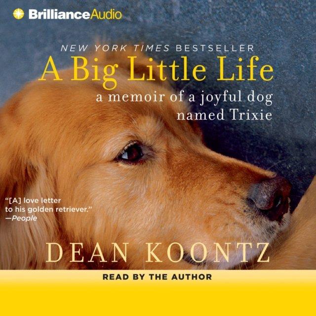 Big Little Life - Audiobook (Książka audio MP3) do pobrania w całości w archiwum ZIP