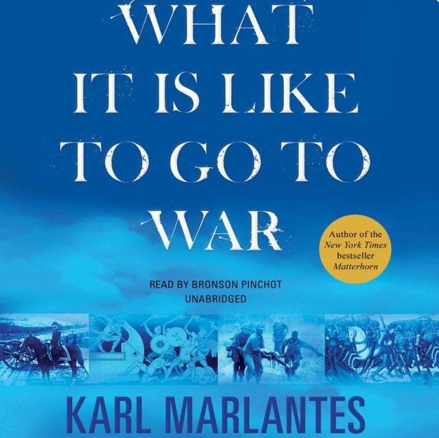 What It Is Like to Go to War - Audiobook (Książka audio MP3) do pobrania w całości w archiwum ZIP