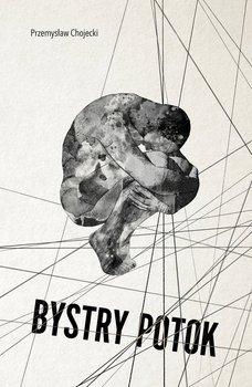 Bystry potok - Ebook (Książka EPUB) do pobrania w formacie EPUB