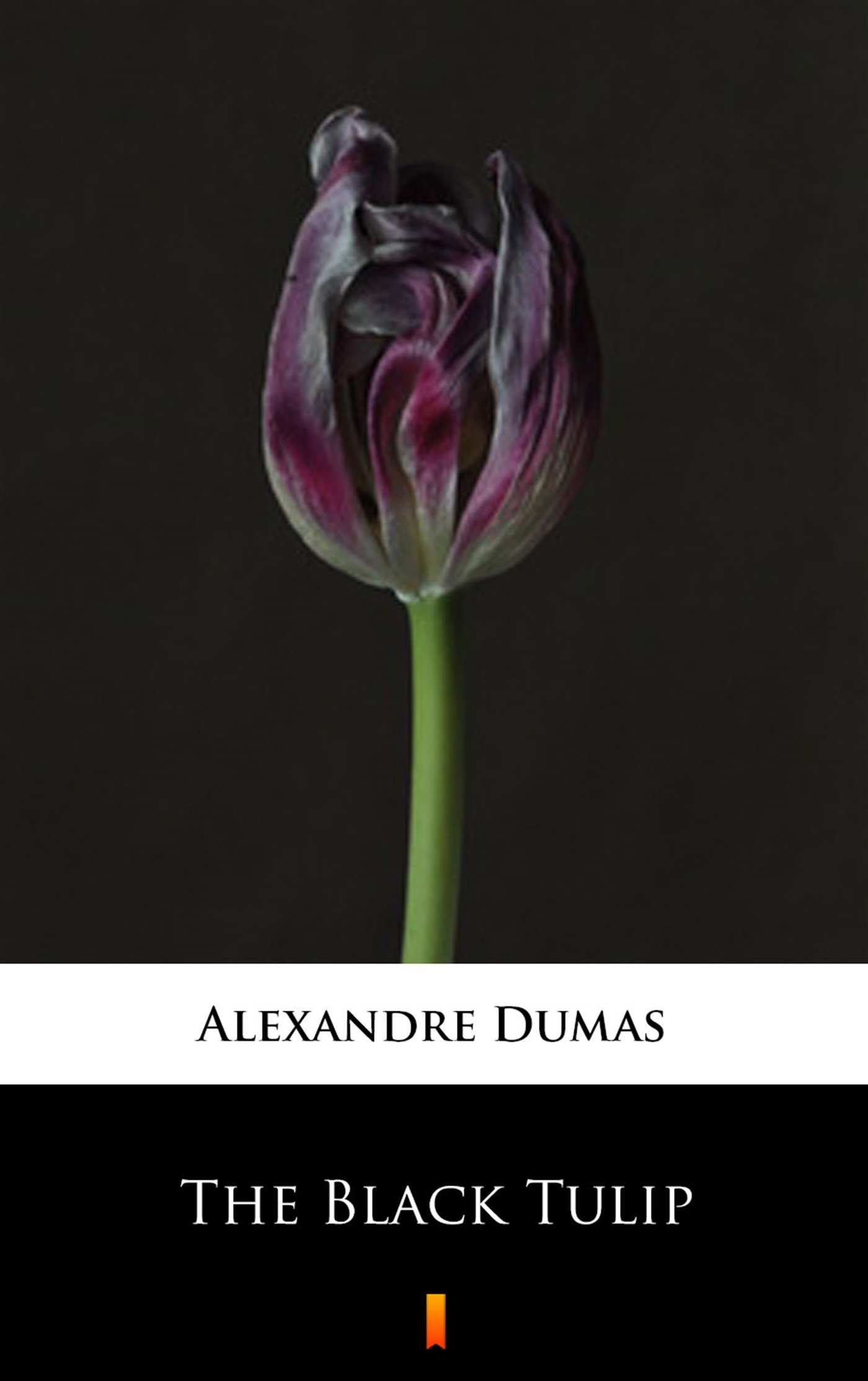 The Black Tulip - Ebook (Książka na Kindle) do pobrania w formacie MOBI