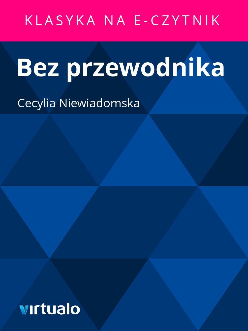 Bez przewodnika - Ebook (Książka EPUB) do pobrania w formacie EPUB