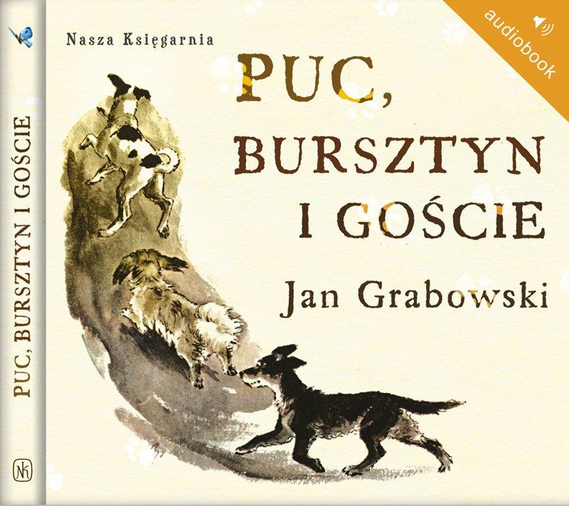 Puc, Bursztyn i goście - Audiobook (Książka audio MP3) do pobrania w całości w archiwum ZIP