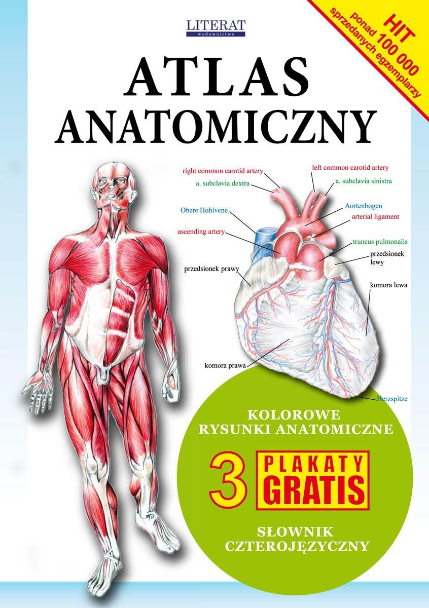 Atlas anatomiczny - Ebook (Książka PDF) do pobrania w formacie PDF