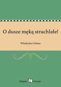O dusze męką struchlałe! - Władysław Orkan - ebook