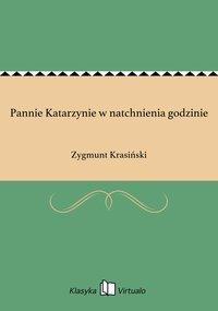 Pannie Katarzynie w natchnienia godzinie - Zygmunt Krasiński - ebook