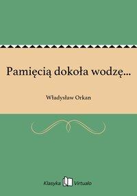 Pamięcią dokoła wodzę... - Władysław Orkan - ebook