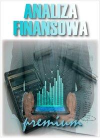 Analiza Finansowa - wersja Premium - e-BizCom