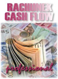 Rachunek Cash-Flow - wersja Professional - e-BizCom