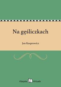 Na gęśliczkach - Jan Kasprowicz - ebook