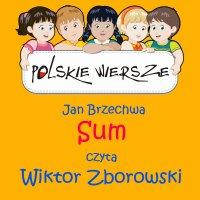Polskie wiersze - Sum