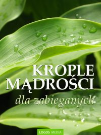 Krople mądrości dla zabieganych - L. M. Book - ebook