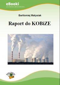 Raport do KOBiZE