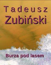 Burza pod lasem - Tadeusz Zubiński - ebook