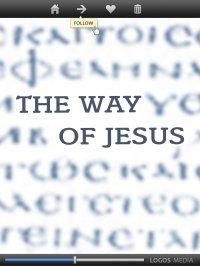 The Way of Jesus - Luke - ebook