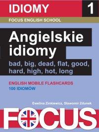 Angielskie idiomy. Zestaw 1 - Ewelina Zinkiewicz - ebook