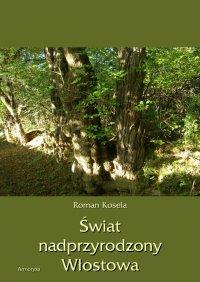 Świat nadprzyrodzony Włostowa - Roman Koseła - ebook
