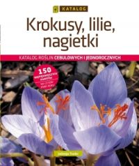 Krokusy, lilie, nagietki. Katalog