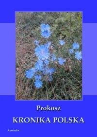 Kronika polska - Prokosz - ebook