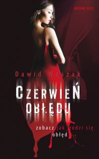 Czerwień obłędu - Dawid Waszak - ebook