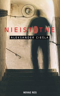Nieistotne - Aleksander Cieśla - ebook