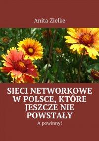 Sieci networkowe w Polsce, które jeszcze nie powstały, a powinny! - Anita Zielke - ebook