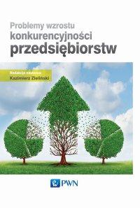 Problemy wzrostu konkurencyjności przedsiębiorstw - Kazimierz Zieliński - ebook