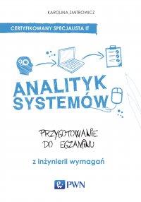 Analityk systemów