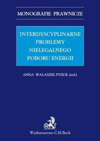 Interdyscyplinarne problemy nielegalnego poboru energii. Studium prawne - Anna Walaszek-Pyzioł - ebook