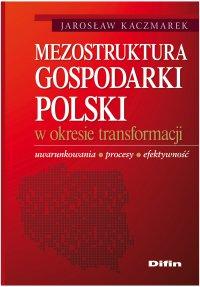 Mezostruktura gospodarki Polski w okresie transformacji. Uwarunkowania, procesy, efektywność - Jarosław Kaczmarek - ebook