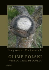 Olimp polski według Jana Długosza - Szymon Matusiak - ebook