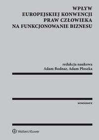 Wpływ Europejskiej Konwencji Praw Człowieka na funkcjonowanie biznesu - Krystyna Kowalik-Bańczyk - ebook