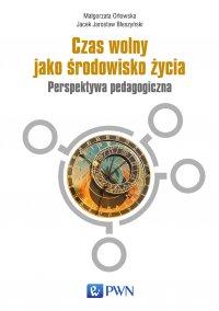 Czas wolny jako środowisko życia - Małgorzata Orłowska - ebook