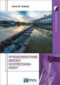 Wysokoefektywne metody oczyszczania wody - Anna M. Anielak - ebook