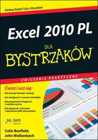 Excel 2010 PL. Ćwiczenia praktyczne dla bystrzaków - Colin Banfield - ebook
