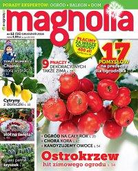 Magnolia 12/2016 - Opracowanie zbiorowe - eprasa
