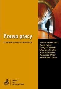 Prawo pracy - Andrzej Patulski - ebook