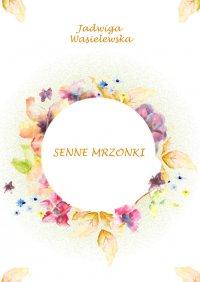 Senne mrzonki - Jadwiga Wasielewska - ebook