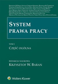 System prawa pracy. TOM I. Część ogólna - Monika Lewandowicz-Machnikowska - ebook