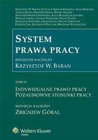 System prawa pracy. TOM IV. Indywidualne prawo pracy. Pozaumowne stosunki pracy - Aneta Giedrewicz-Niewińska - ebook