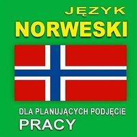 Język norweski dla planujących podjęcie pracy