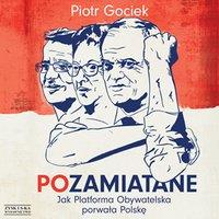 POzamiatane. Jak Platforma Obywatelska porwała Polskę