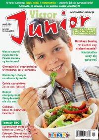 Victor Junior nr 1 (299)