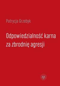 Odpowiedzialność karna za zbrodnię agresji - Patrycja Grzebyk - ebook