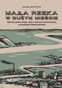 Mała rzeka w dużym mieście. Wybrane aspekty obiegu wody na obszarze zurbanizowanym na przykładzie łódzkiej Sokołówki - Adam Bartnik - ebook