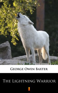 The Lightning Warrior - George Owen Baxter - ebook