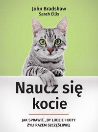 Naucz się kocie