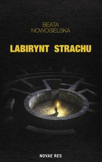 Labirynt strachu - Beata Nowosielska - ebook