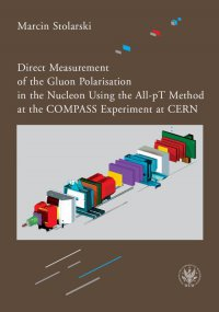 Direct Measurement of the Gluon Polarisation in the Nucleon Using the All-pT Method at the COMPASS Experiment at CERN - Marcin Stolarski - ebook