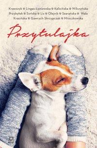 Przytulajka - Agnieszka Krawczyk - ebook